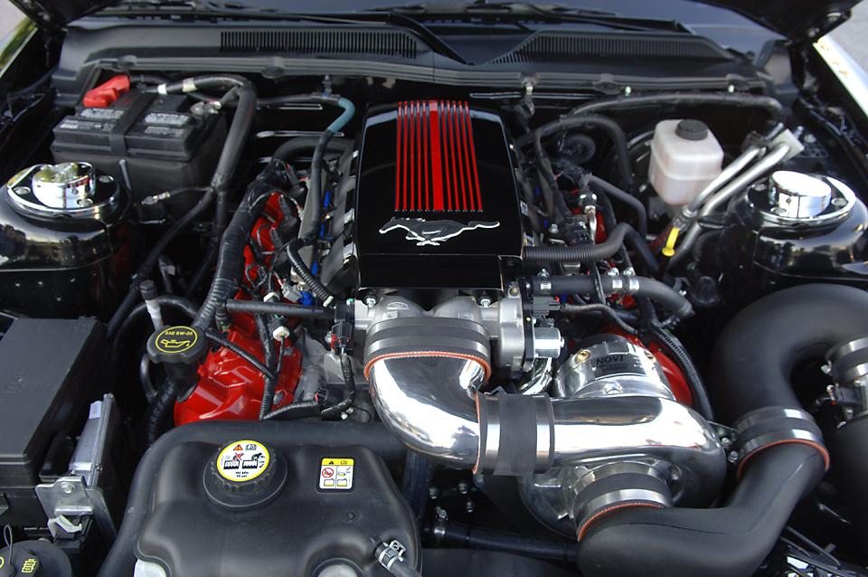 Mustang032.jpg