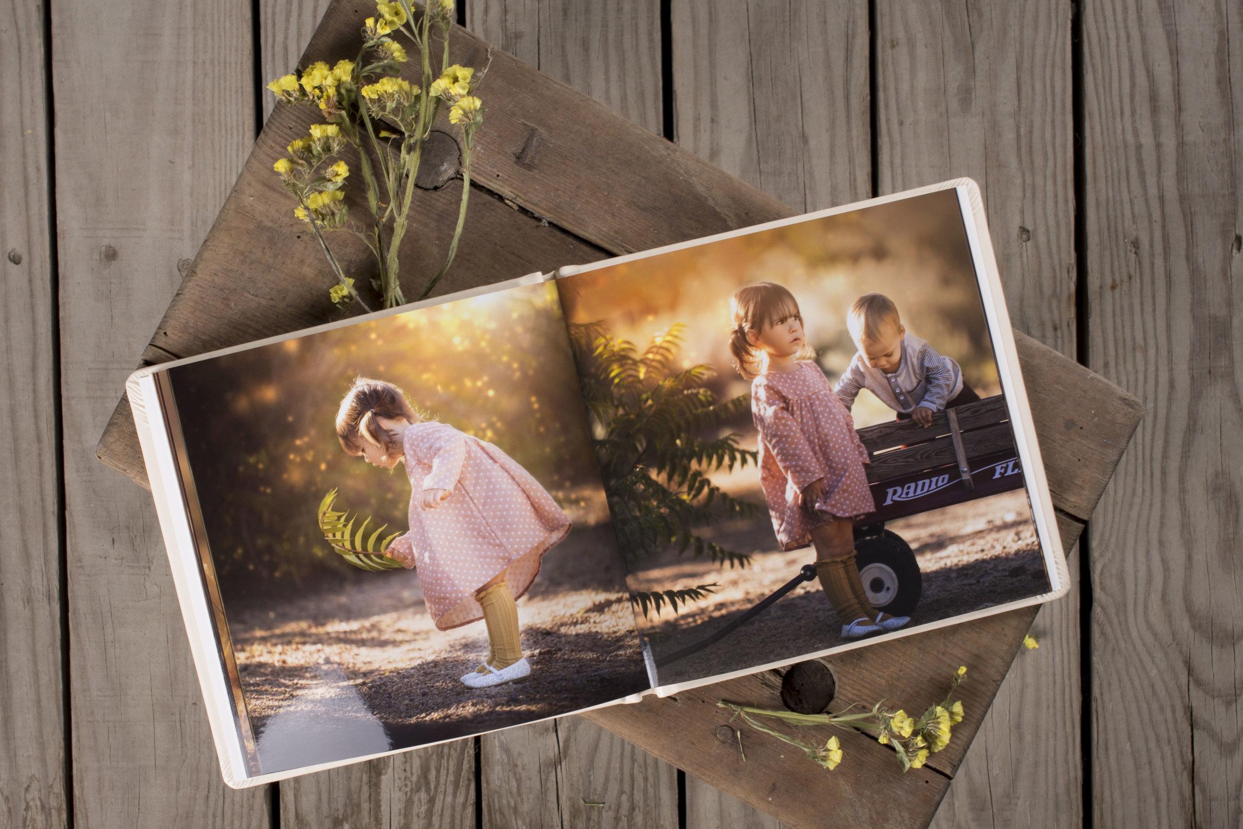 Dream Book Acrylic F3 AP9 Lory Marie_3.jpg