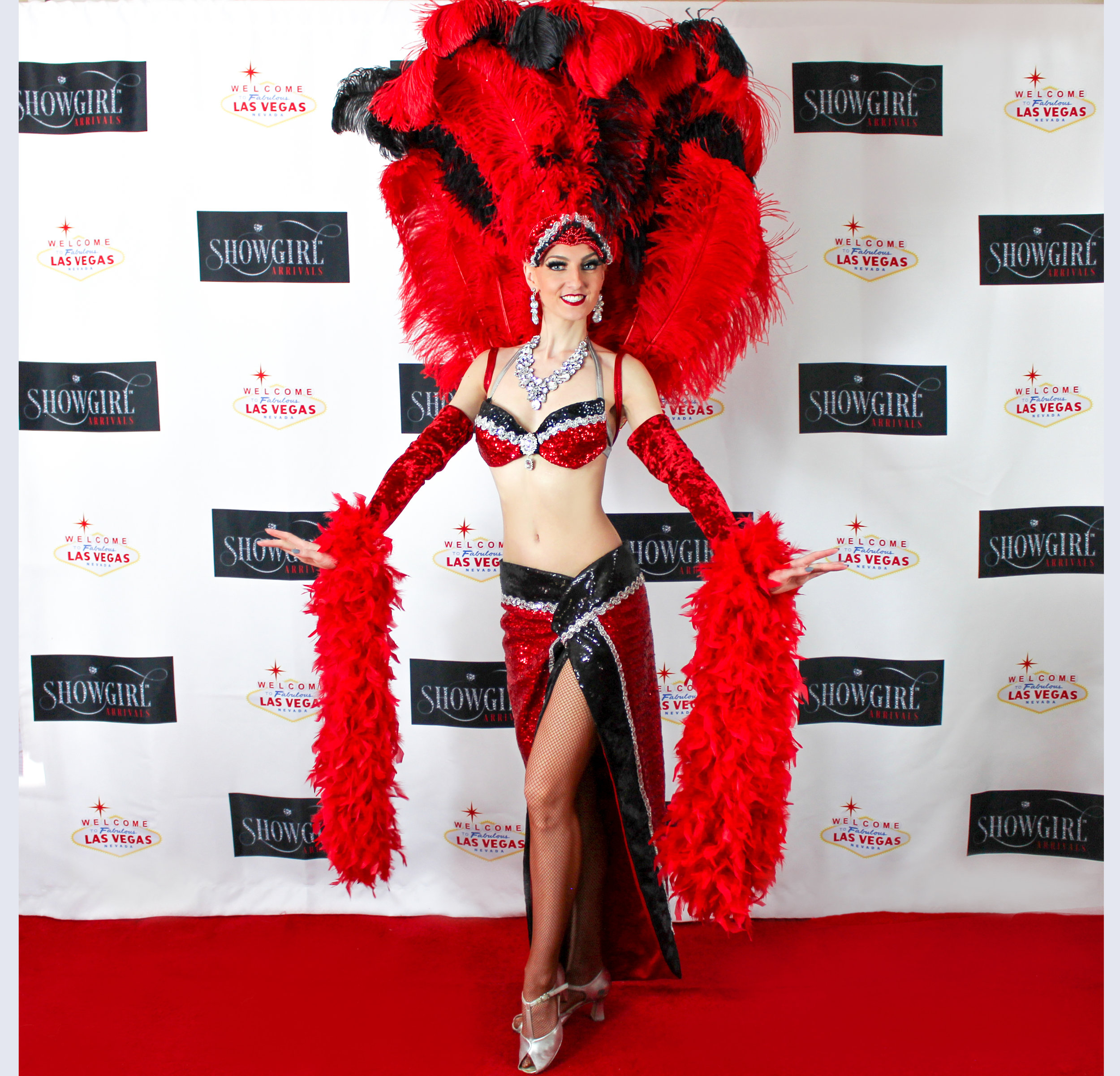 Spotlight - Our Signature Costume in Red, Black and Silver Sequins