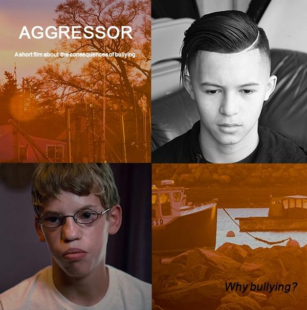 Aggressor poster.jpg