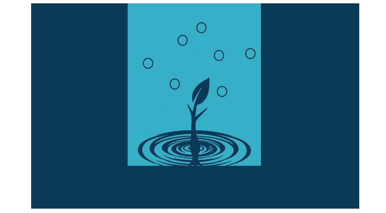 RBCF-Logo.png