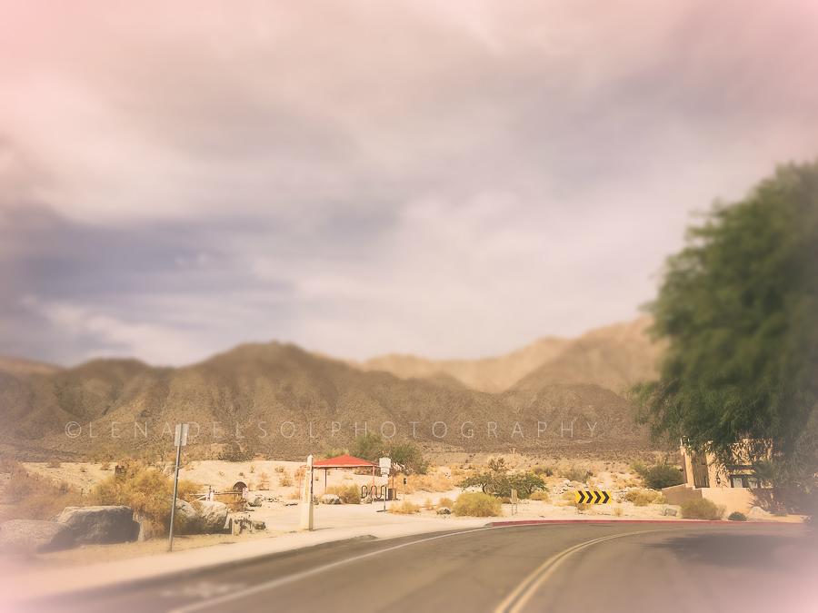 39-98_desert 2.jpg
