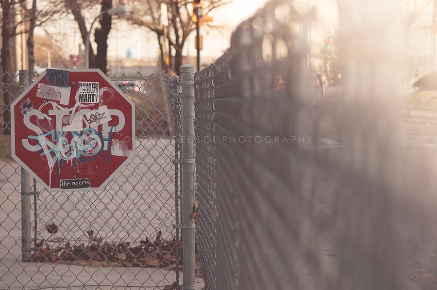 Queens-10-10.jpg