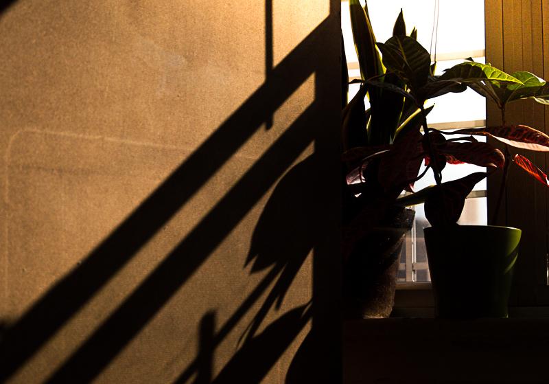 Light-Experiements-1.jpg