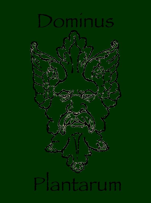DP.Logo.transparent.w.text.png