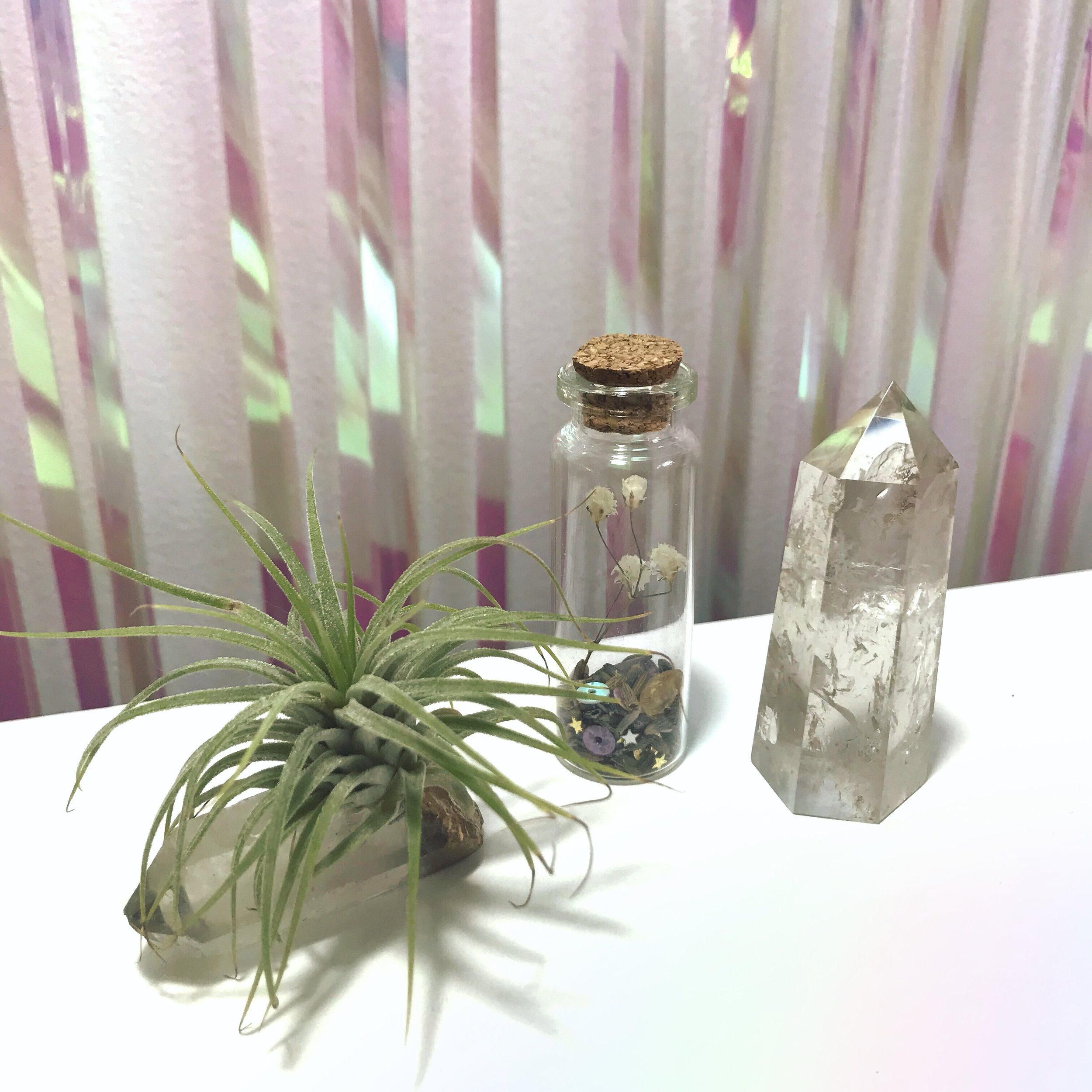 crystal-air-plant