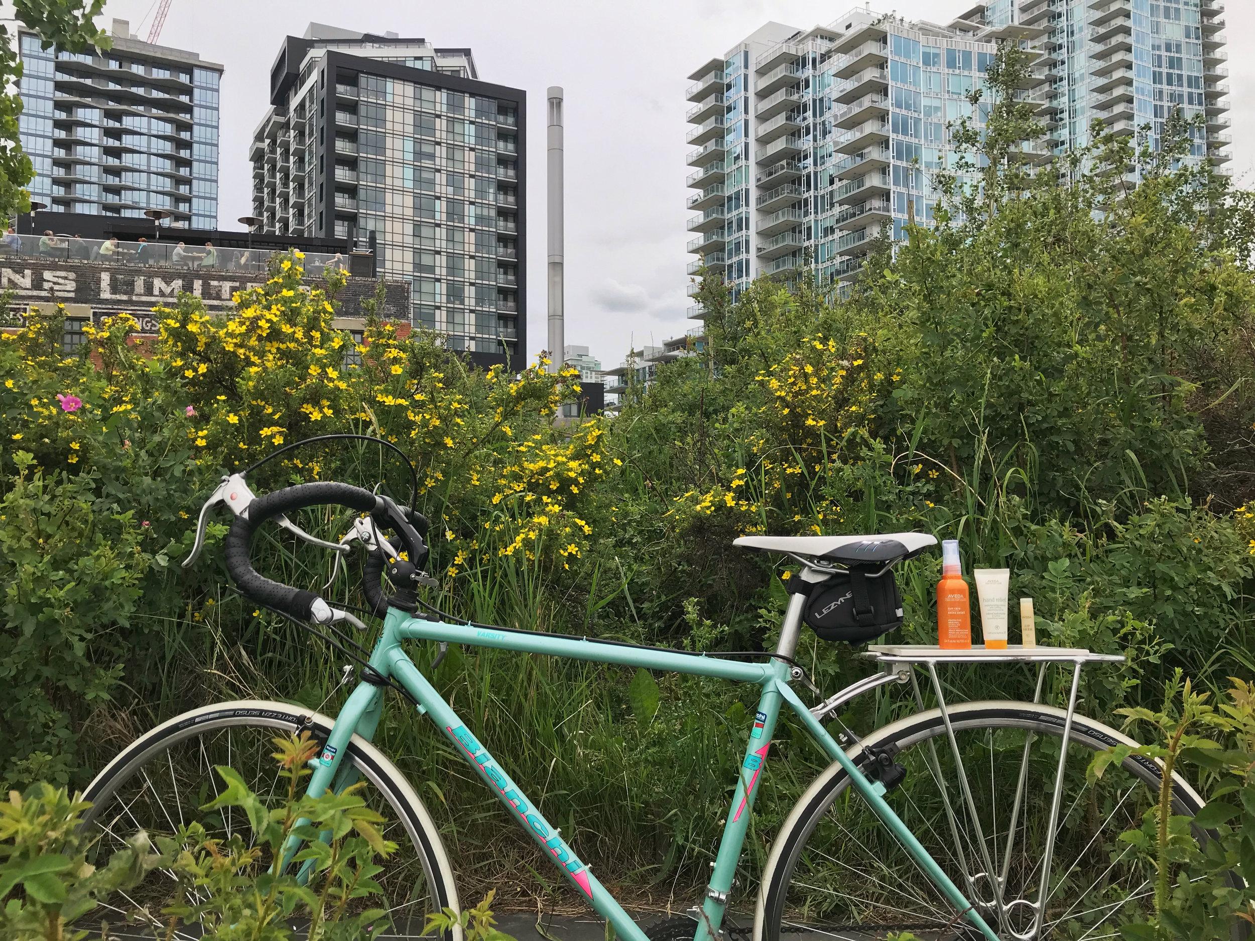 Bike Essentials