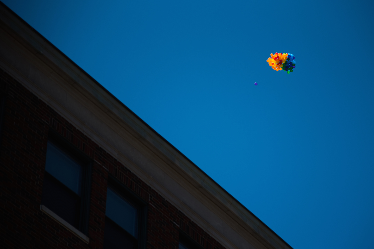 Free balloons above Portland.