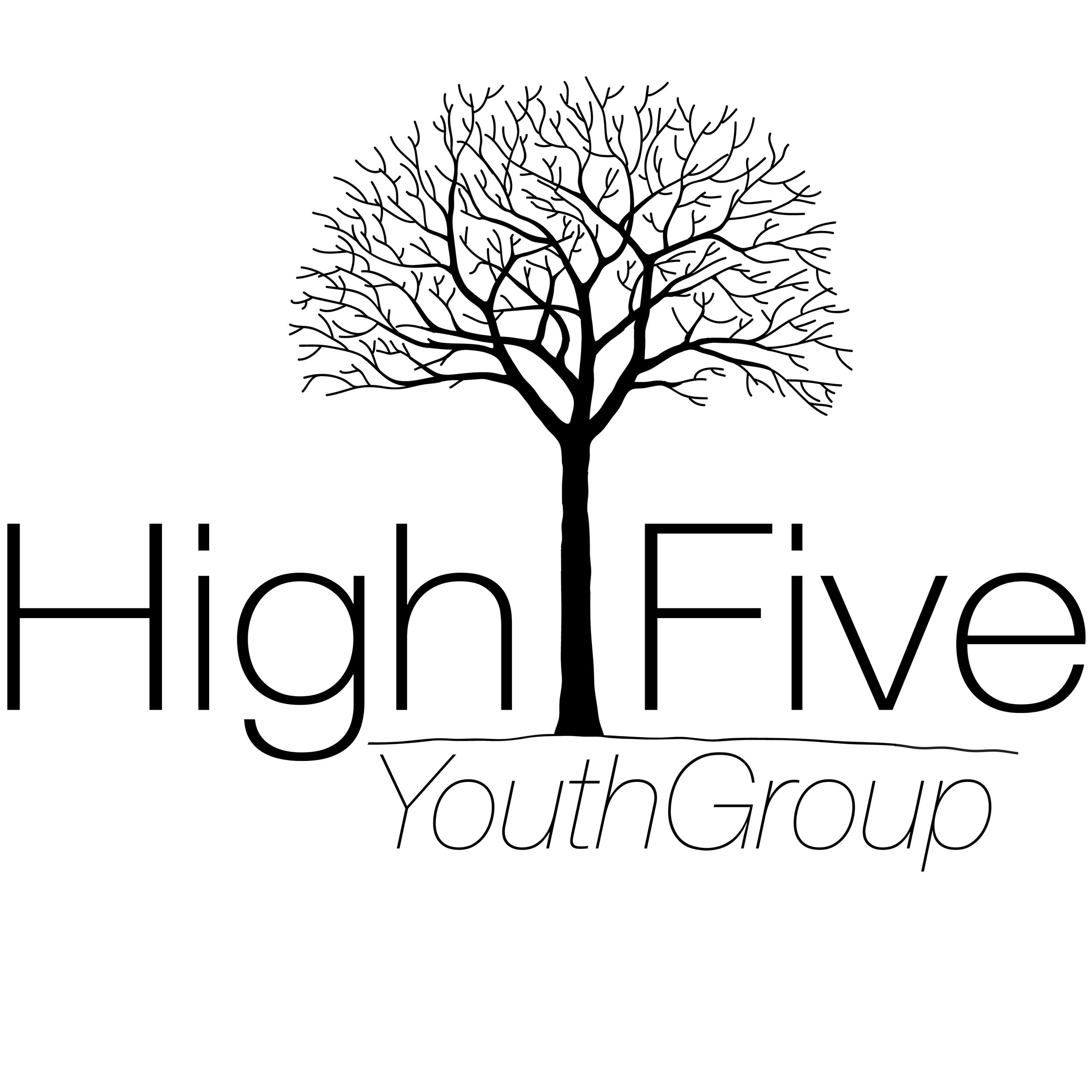 High Five Logo - FINAL (large).jpg