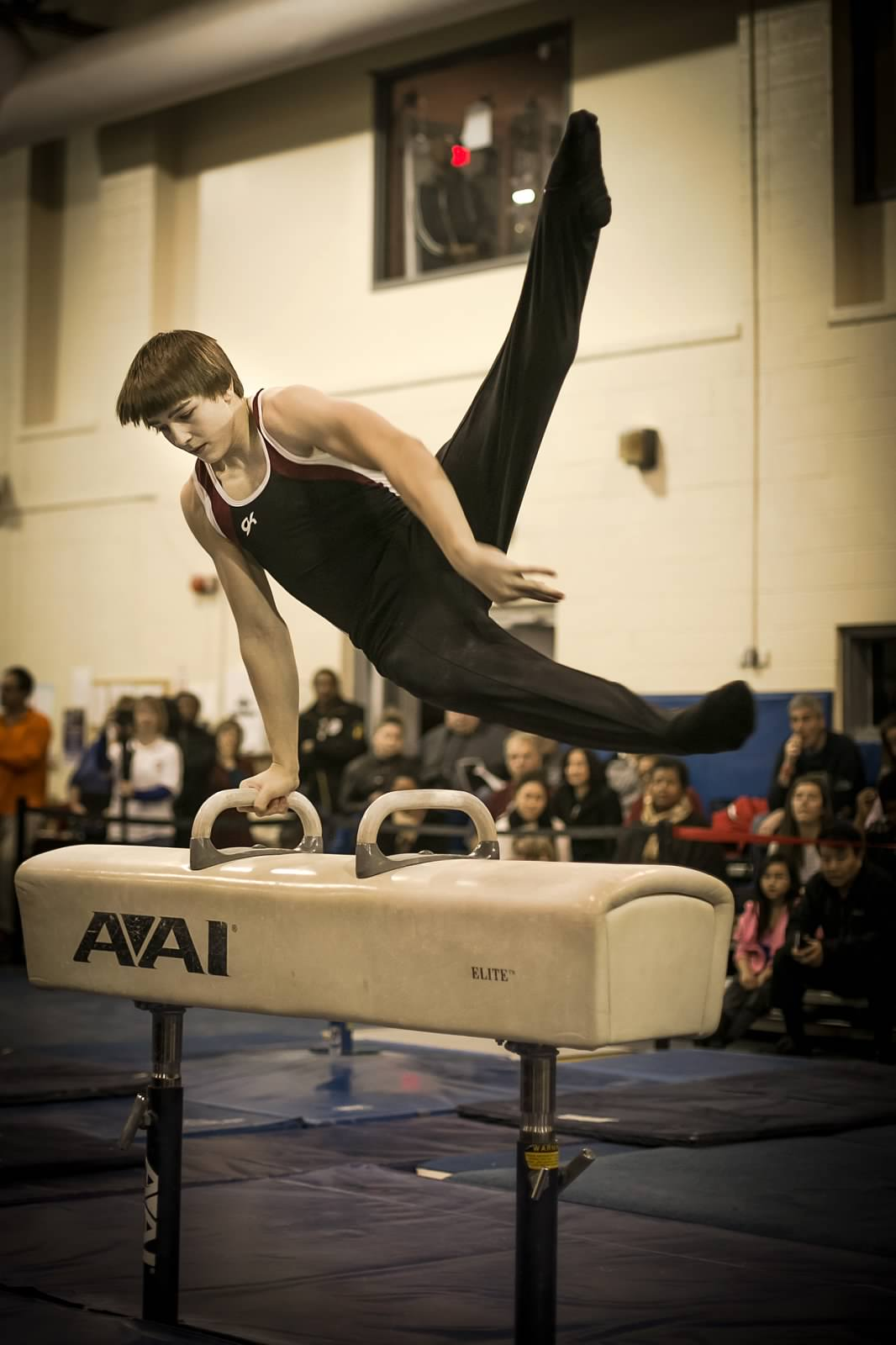A Level 9 on the pommel horse during the 2013 BWI.