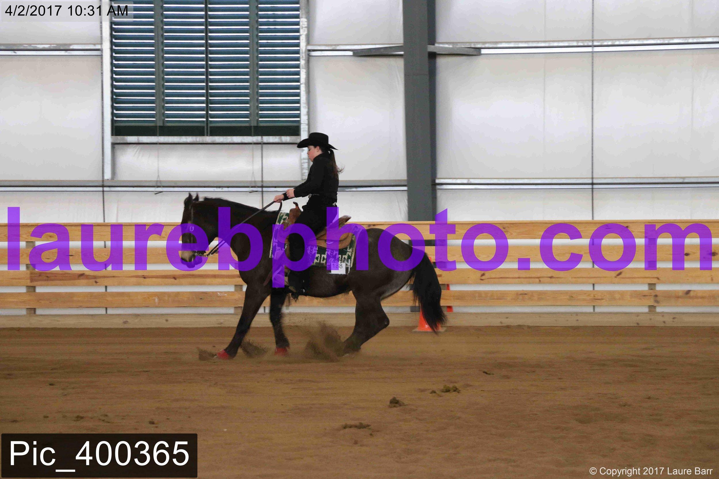Pic_400365.jpg