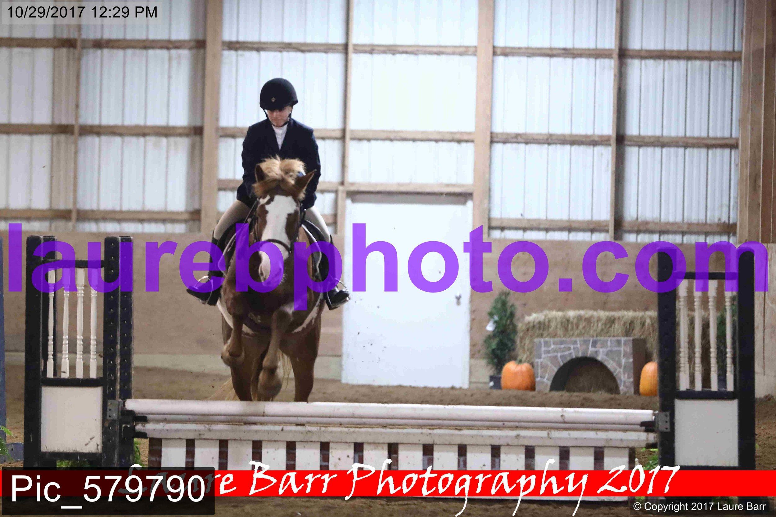 Pic_579790.jpg