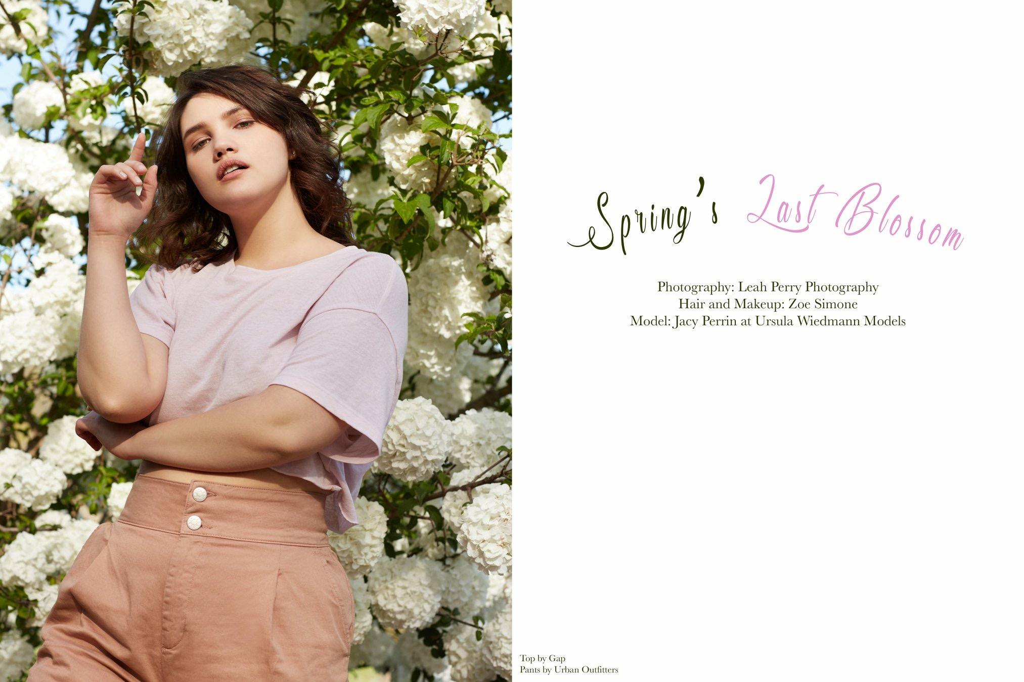 Jejune 1 Spring Opener.jpg