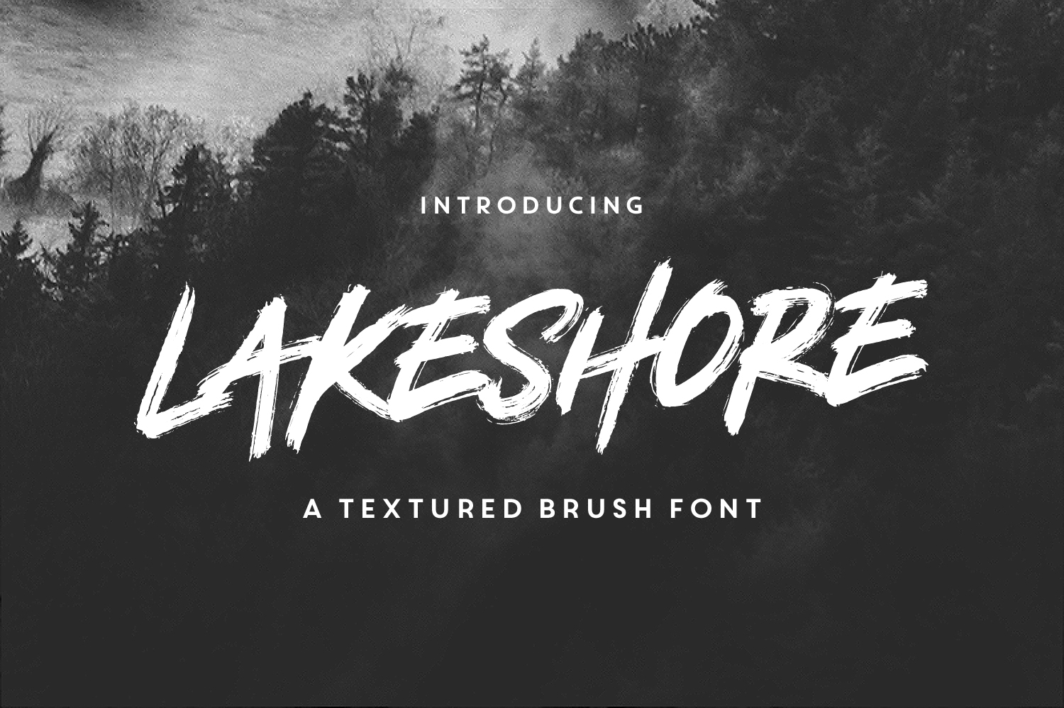 Lakeshore Brush Font - Available on Creative MarketAvailable on Font Spring