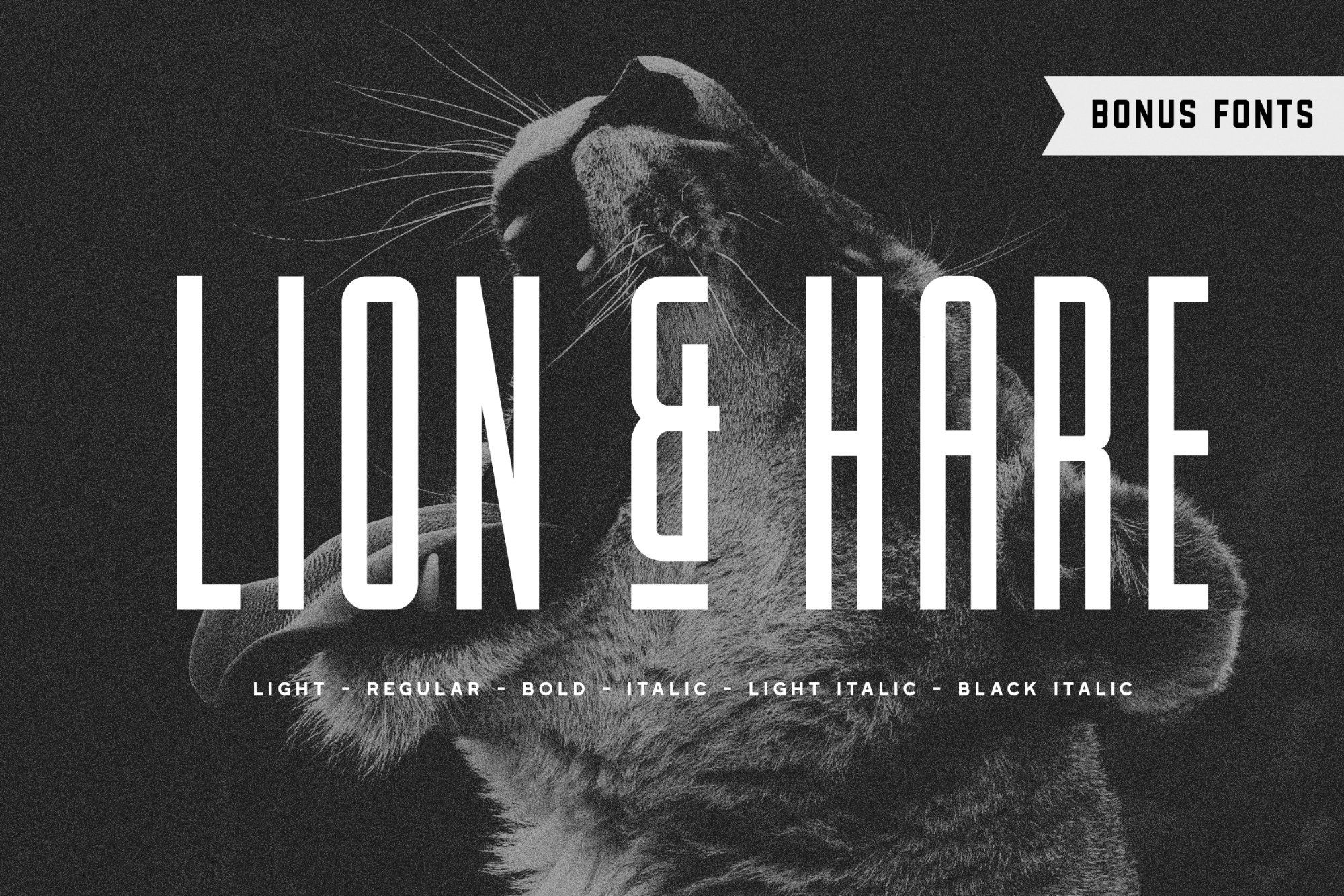 Lion & Hare Font Family - Available on Creative MarketAvailable on Font Spring