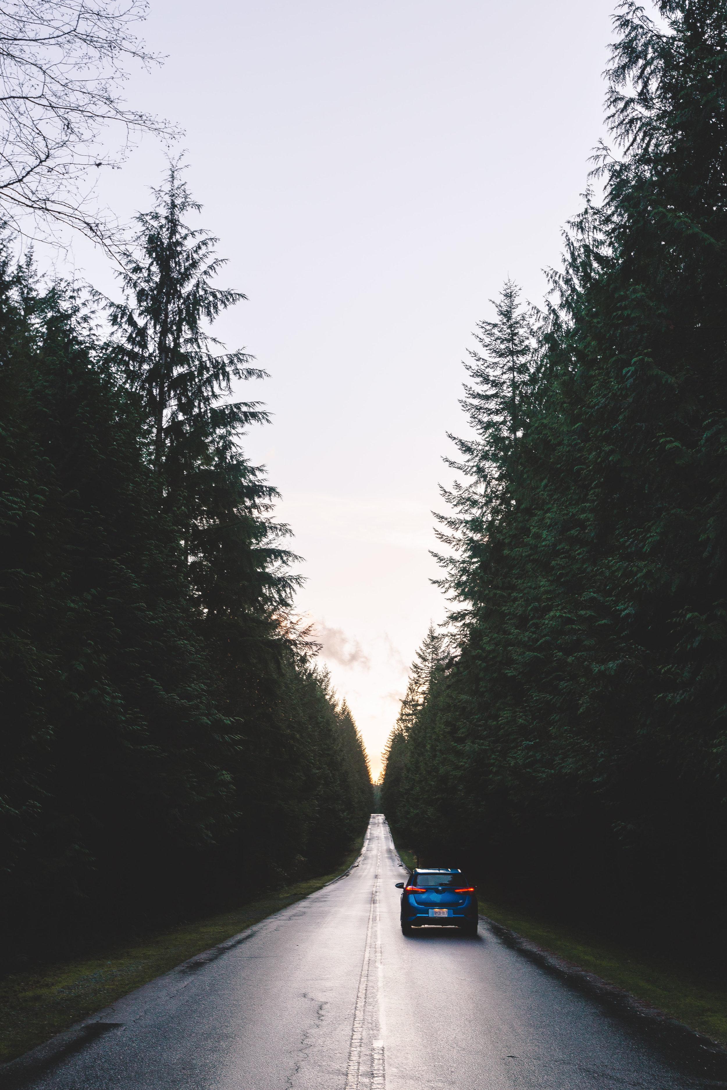 Toyota Corolla iM - VancityWild - Golden Ears Provincial Park
