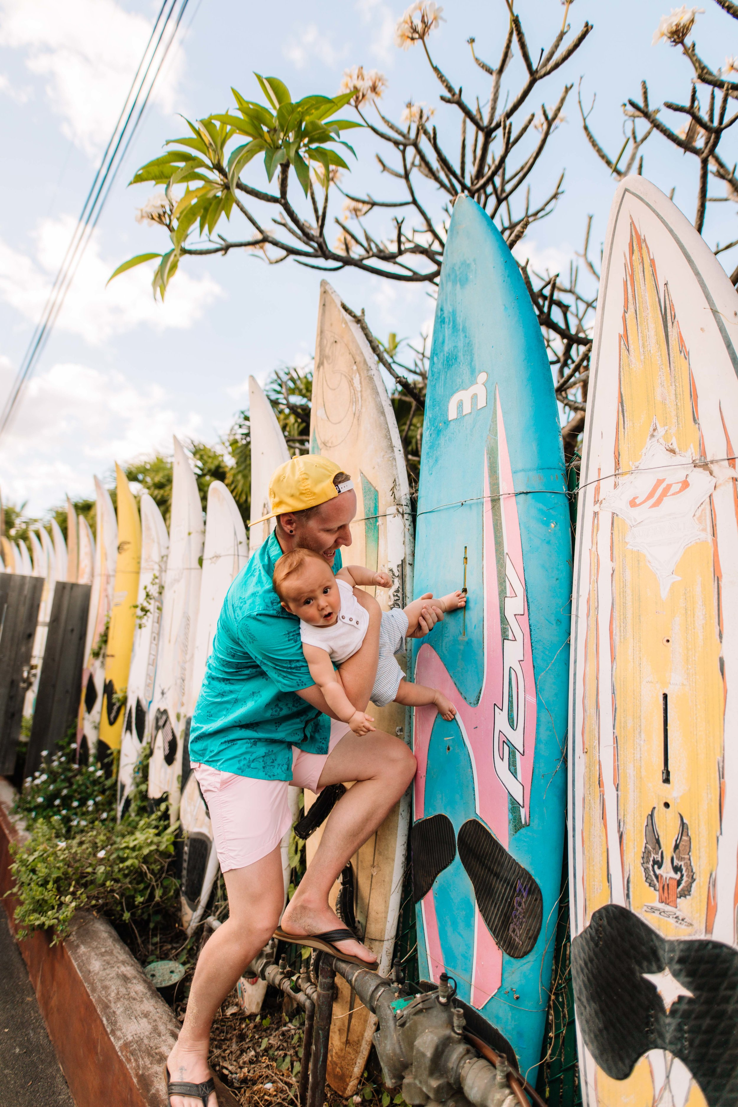 Paia - Surf Board Wall