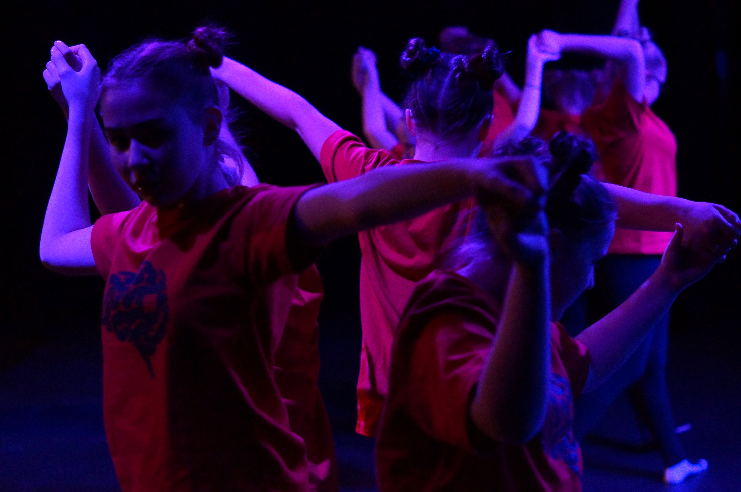 Dance Nexus 6 - Windermere Primary (Photo by Katie Palmer).JPG