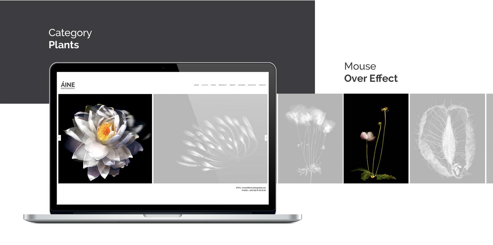 Hoerter_Responsive_Webdesign_4.jpg