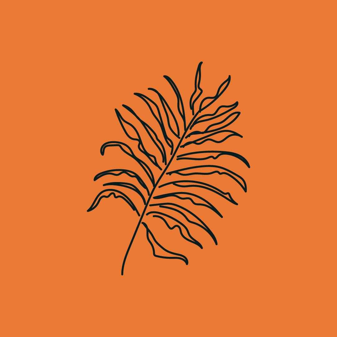 The London Celebrant_Illustration_Leaf 01_Artwork_RGB_1080X1080pixels_Orange_Black.png