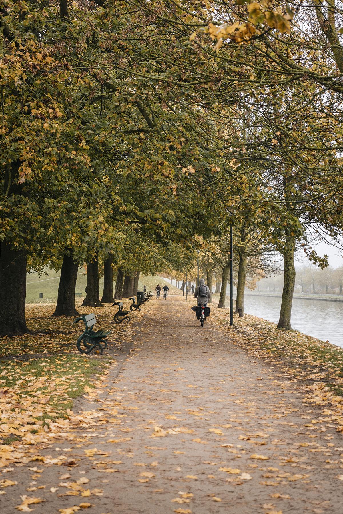 autumn bruges park - Patricia Martins Yellowish blog