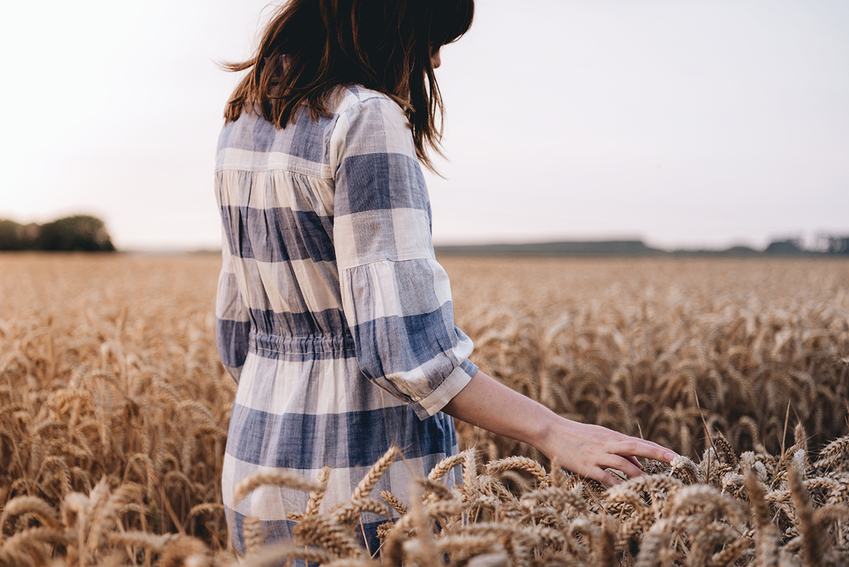 Summer wheat fields Portrait