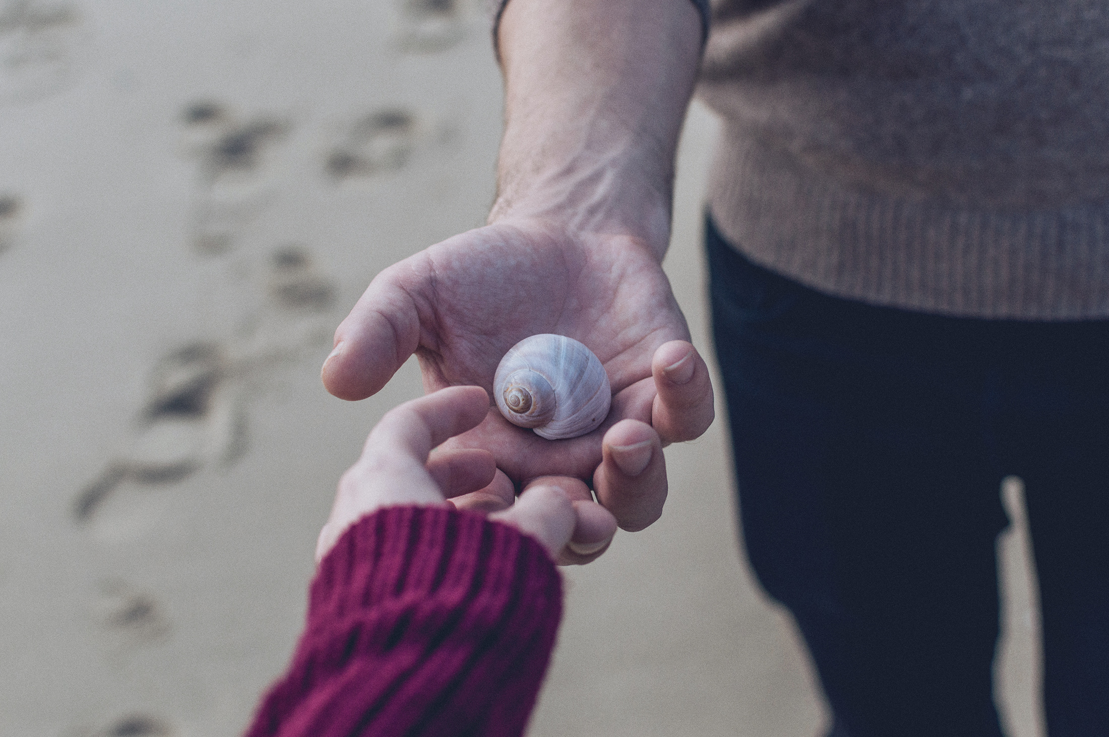 Hands shell beach