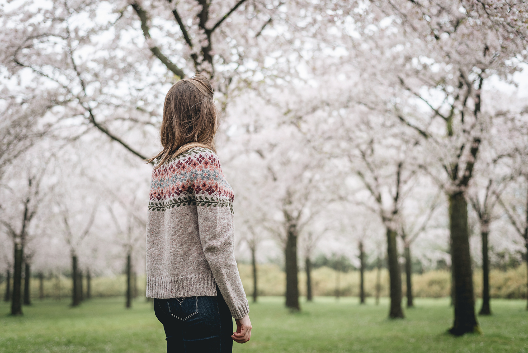 hanami-sakura-cherry blossom- birkin sweater