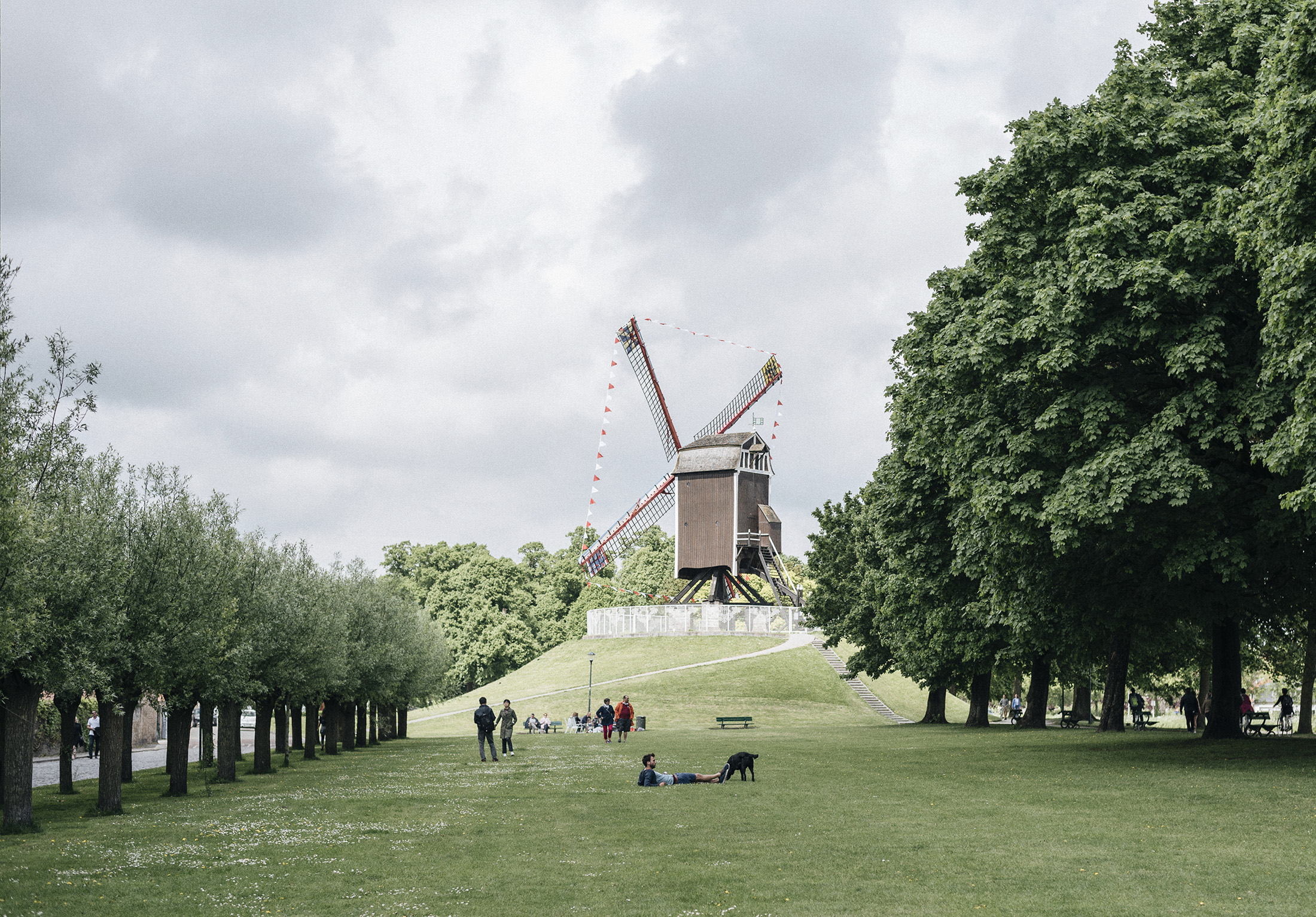 Bruges Belgium spring windmill park - Patricia Martins yellowish blog