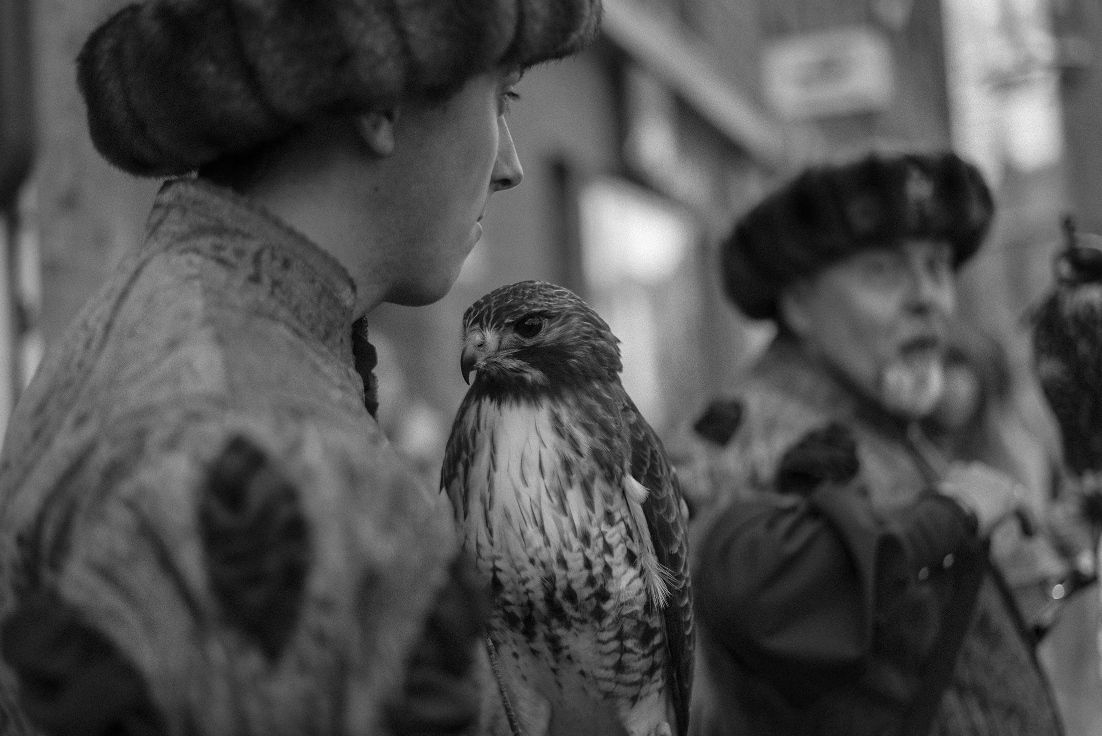 eagle - Bruges - black and white photography - Yellowish 2019 Patricia Martins