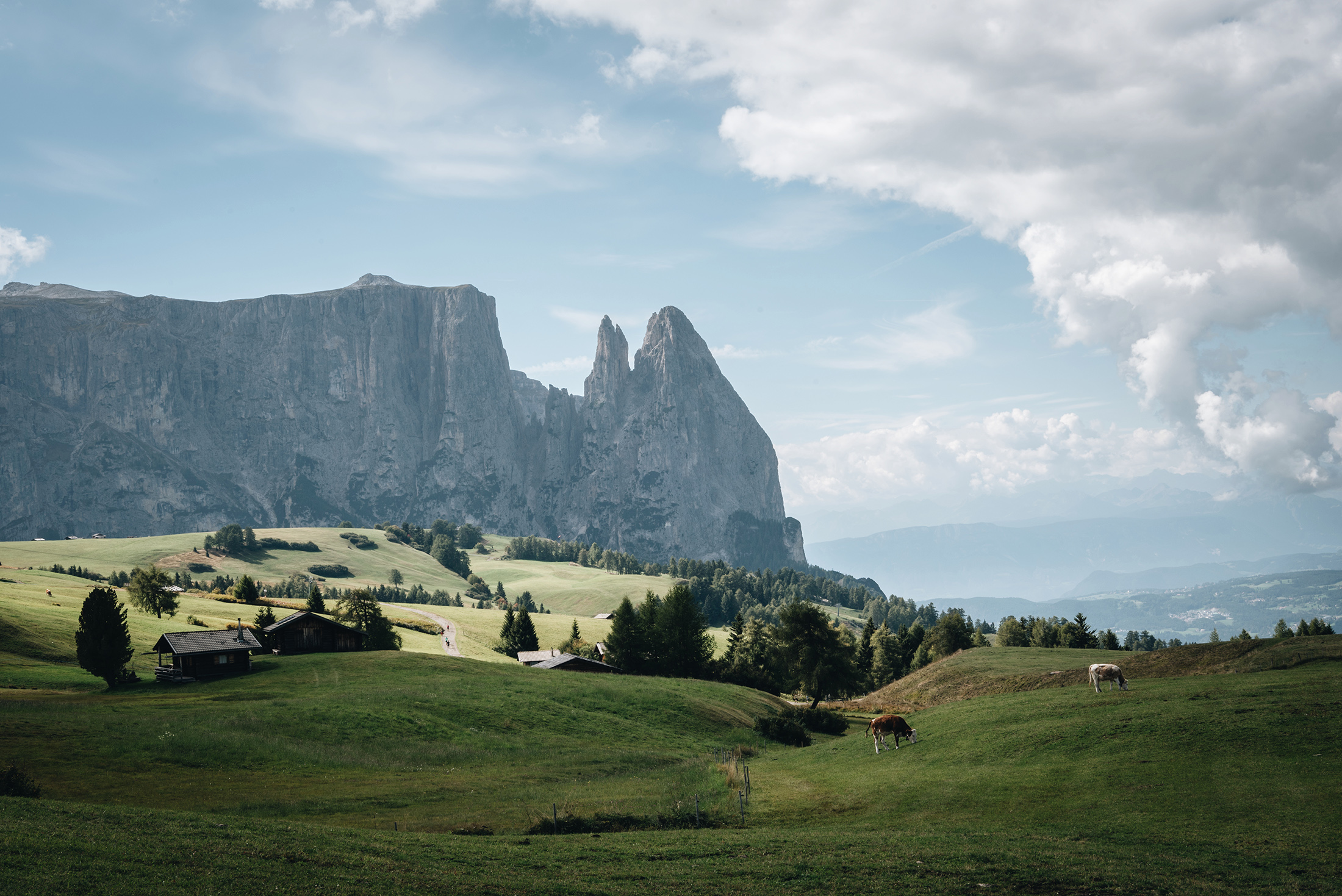 Dolomites Alpe di Siusi