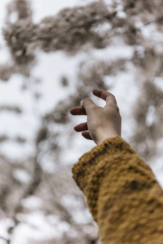 hand pointing sakura