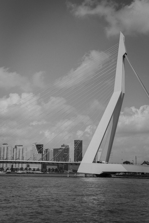 Rotterdam Erasmus bridge bnw photography