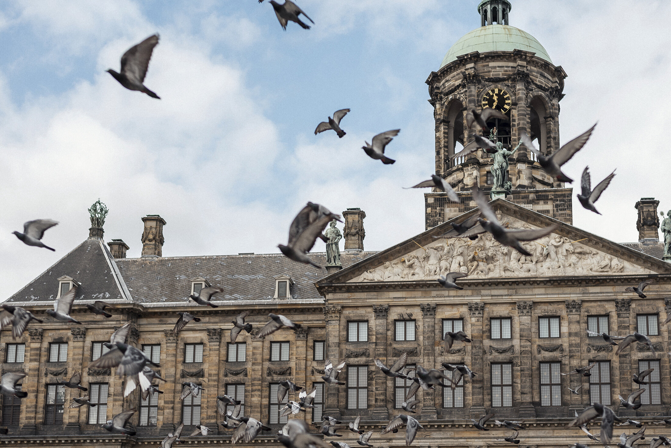 Dam Square Amsterdam birds flying pigeons
