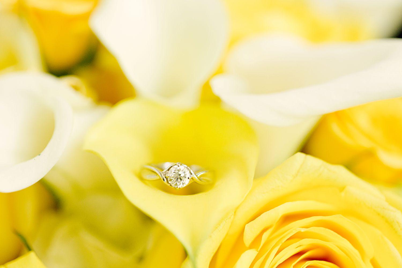Yaeger Engagement_0062.jpg