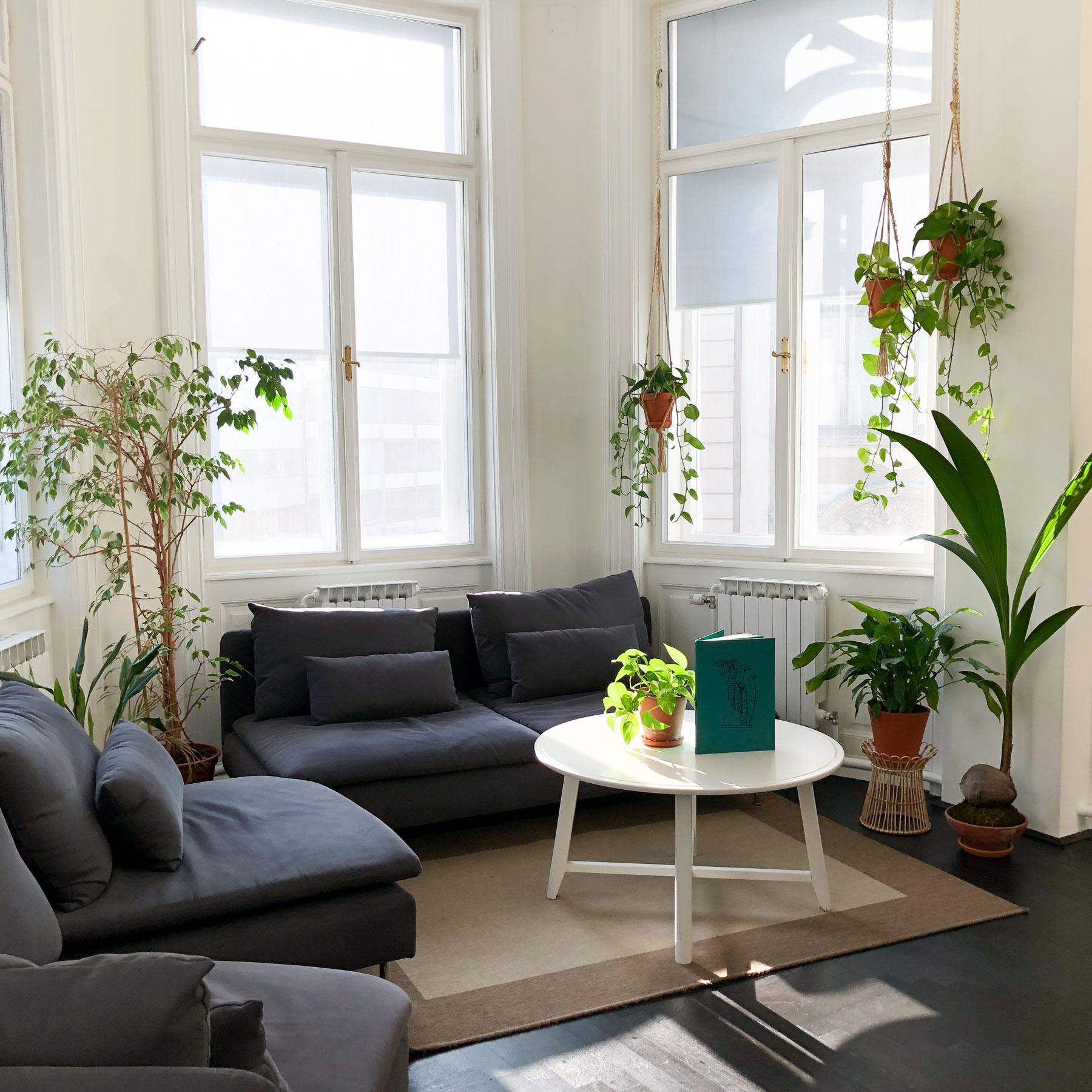 Ulmon Office Jungle