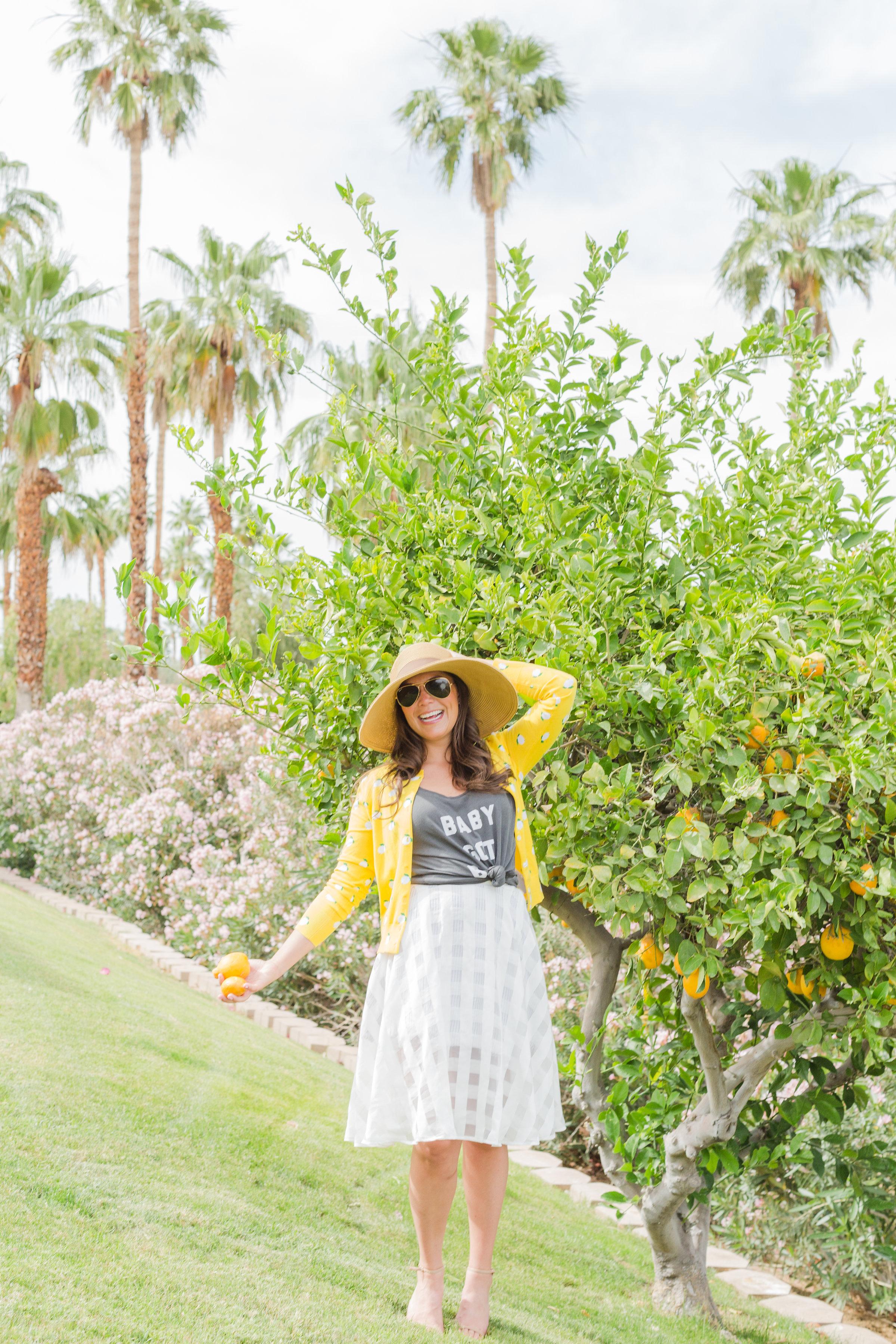 EricaMendenhallPhotographyDenverDarlingBlog_MP_2411.jpg