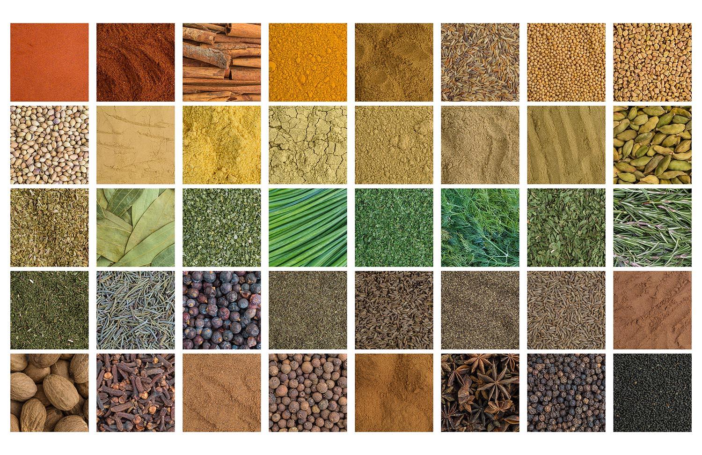 HerbsandSpices.jpg
