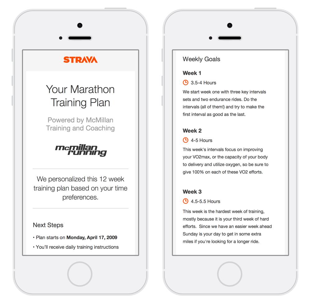 INSITU_run-training-plan_email.jpg
