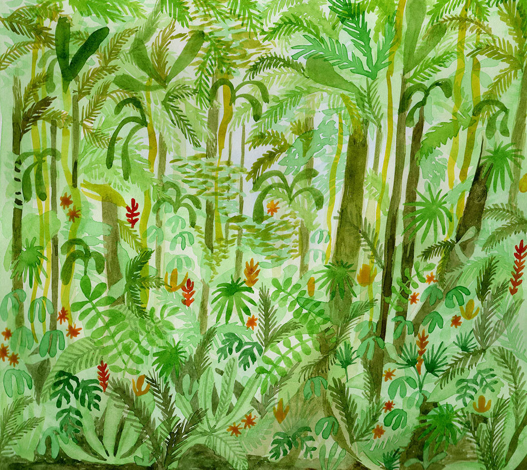 Imagining the Amazon