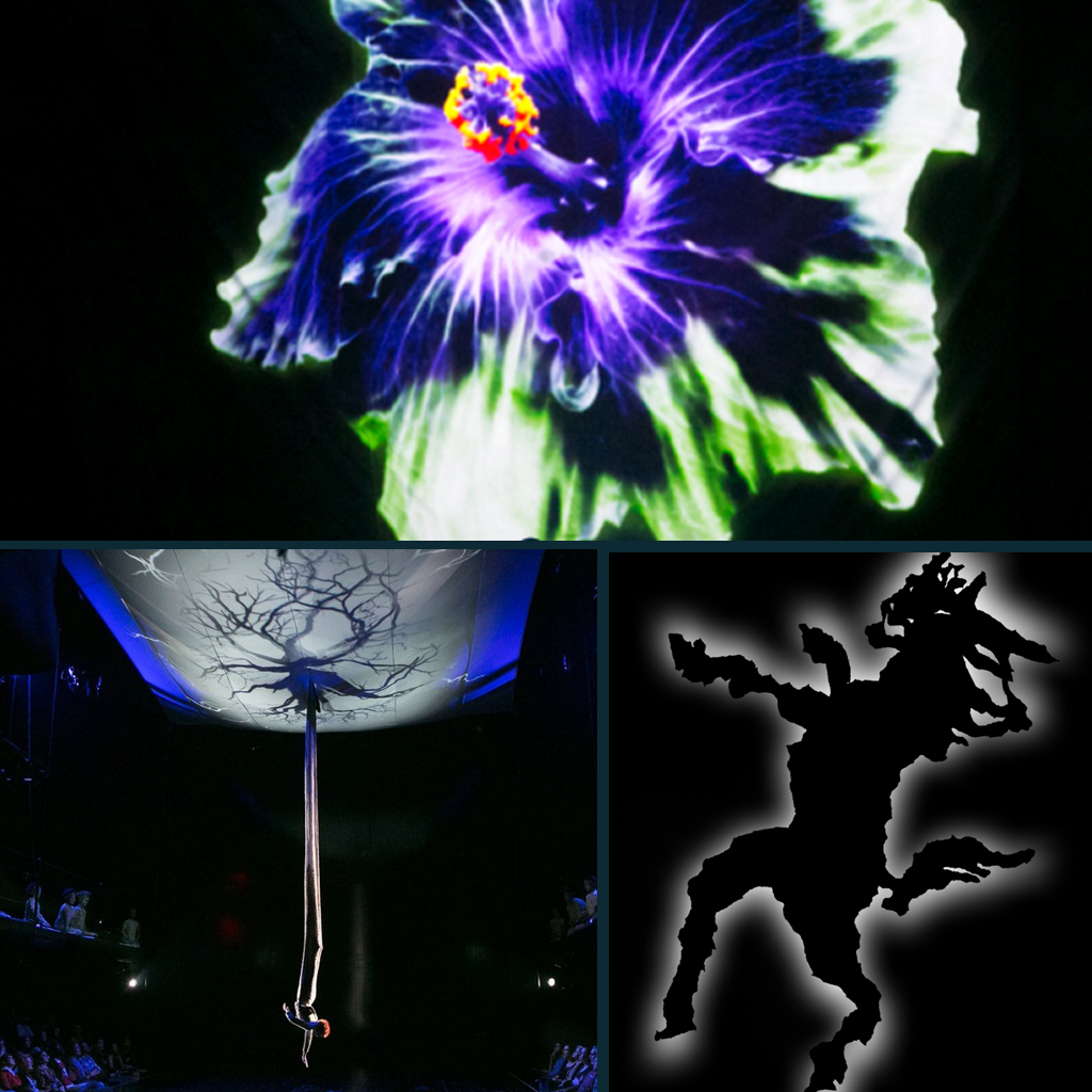 A Midsummer Night's Dream : Theater for a New Audience, NYC         directed by Julie Taymor Associate Projection Design