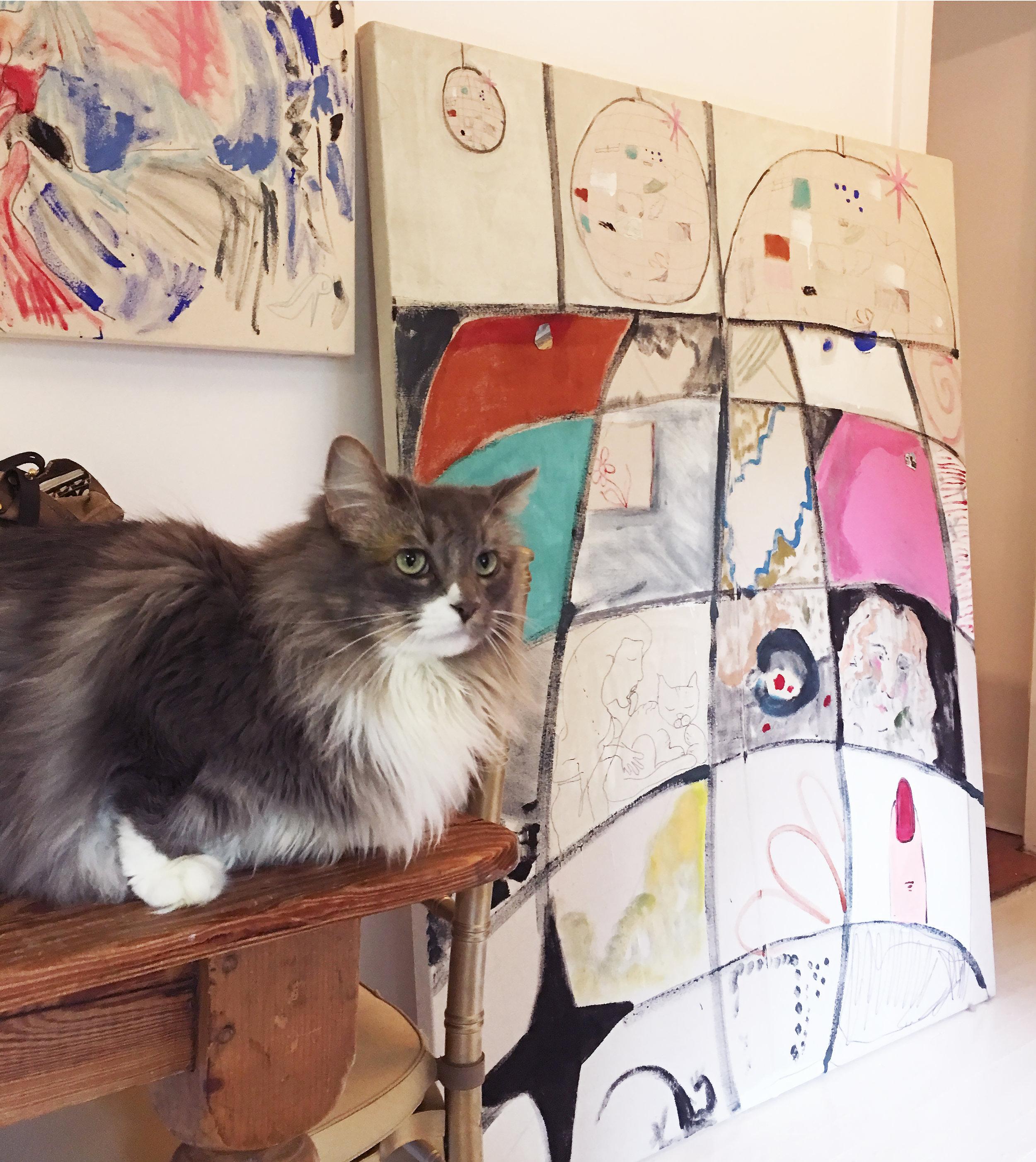 Hannah Tarr Studio