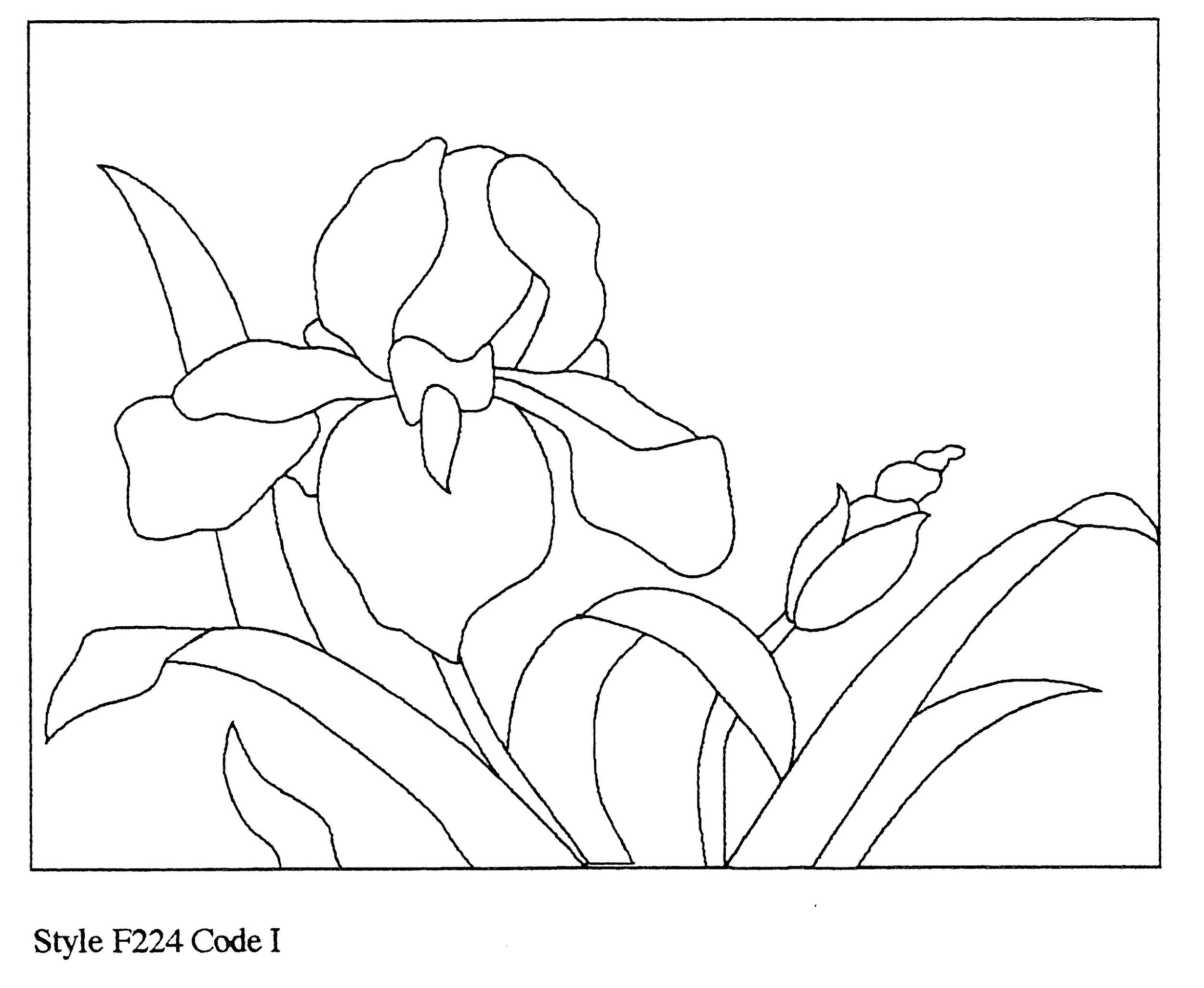 Page 11 copy 3.jpg