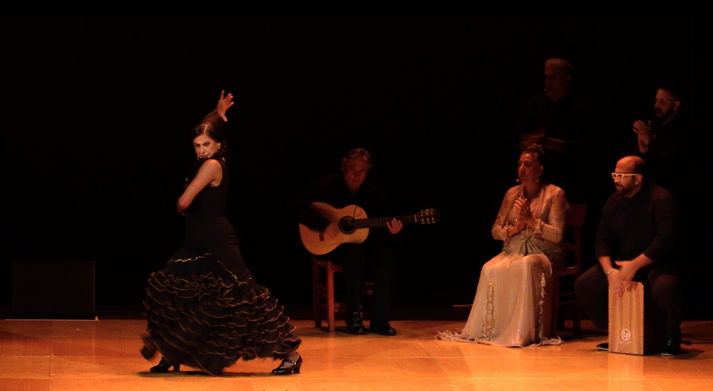Passionately Professional - Donations help Theatre Flamenco of San Francisco to hire world class dancers and musicians and invest in productions provided by Theatre Flamenco of San Francisco. Our 53rd home season in November, 2019 will be with top level dancers and musicians from Spain.