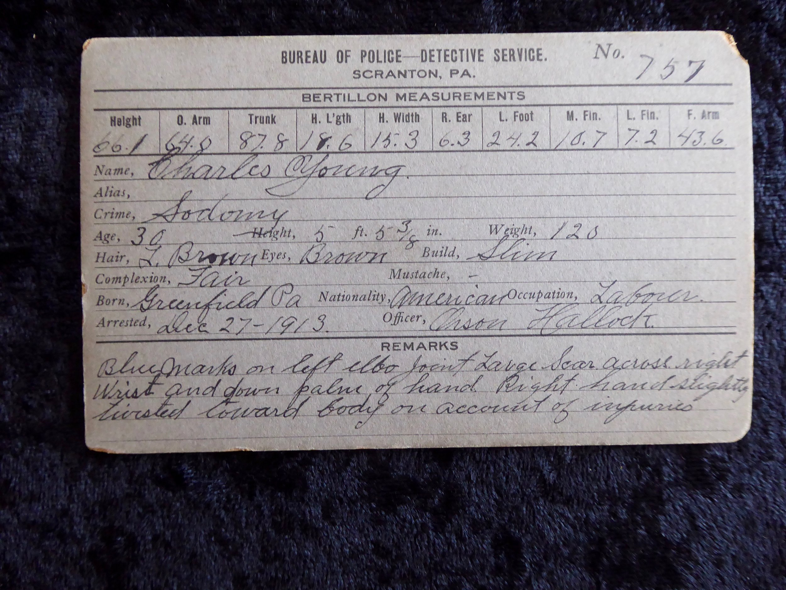 1913 - CDV Mugshot - Man Arrested for Sodomy — Sherwood's Treasures