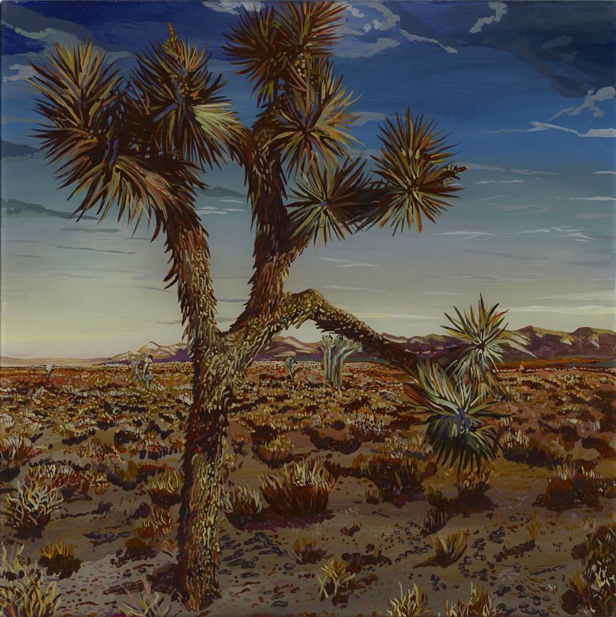 Joshua Tree Shadows  Acrylic on plexiglass 12 in x 12 in 2015