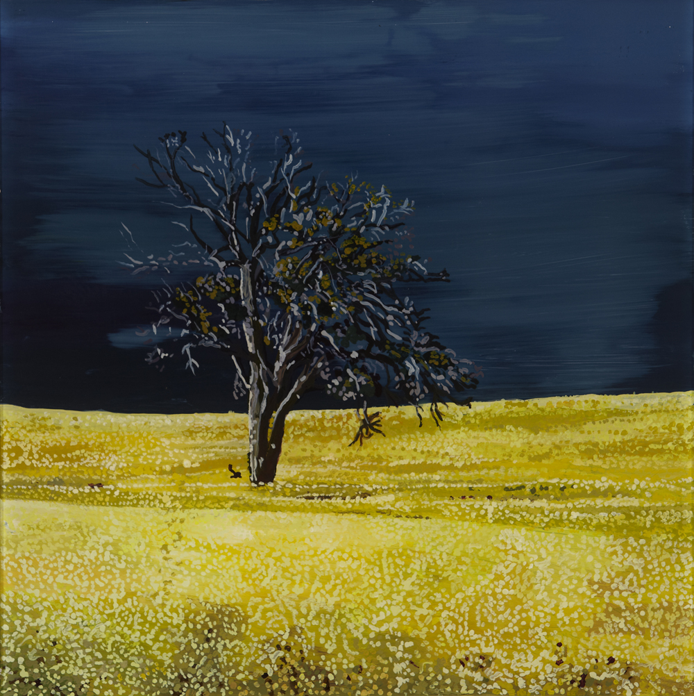Canola Storm  Acrylic on plexiglass 12in x 12in 2015