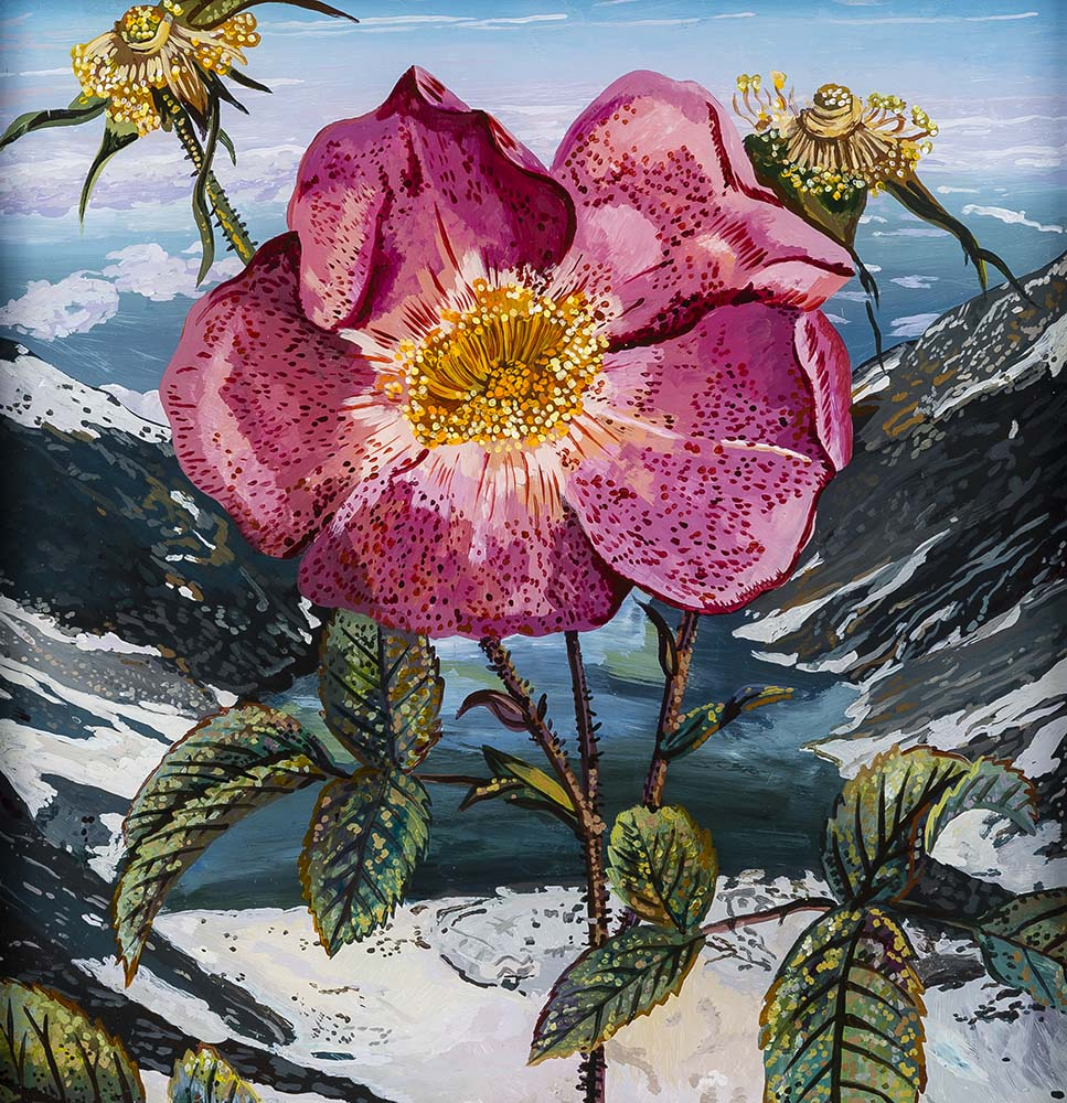 Glacial Rose  Acrylic on plexiglass 12in x 12in 2015