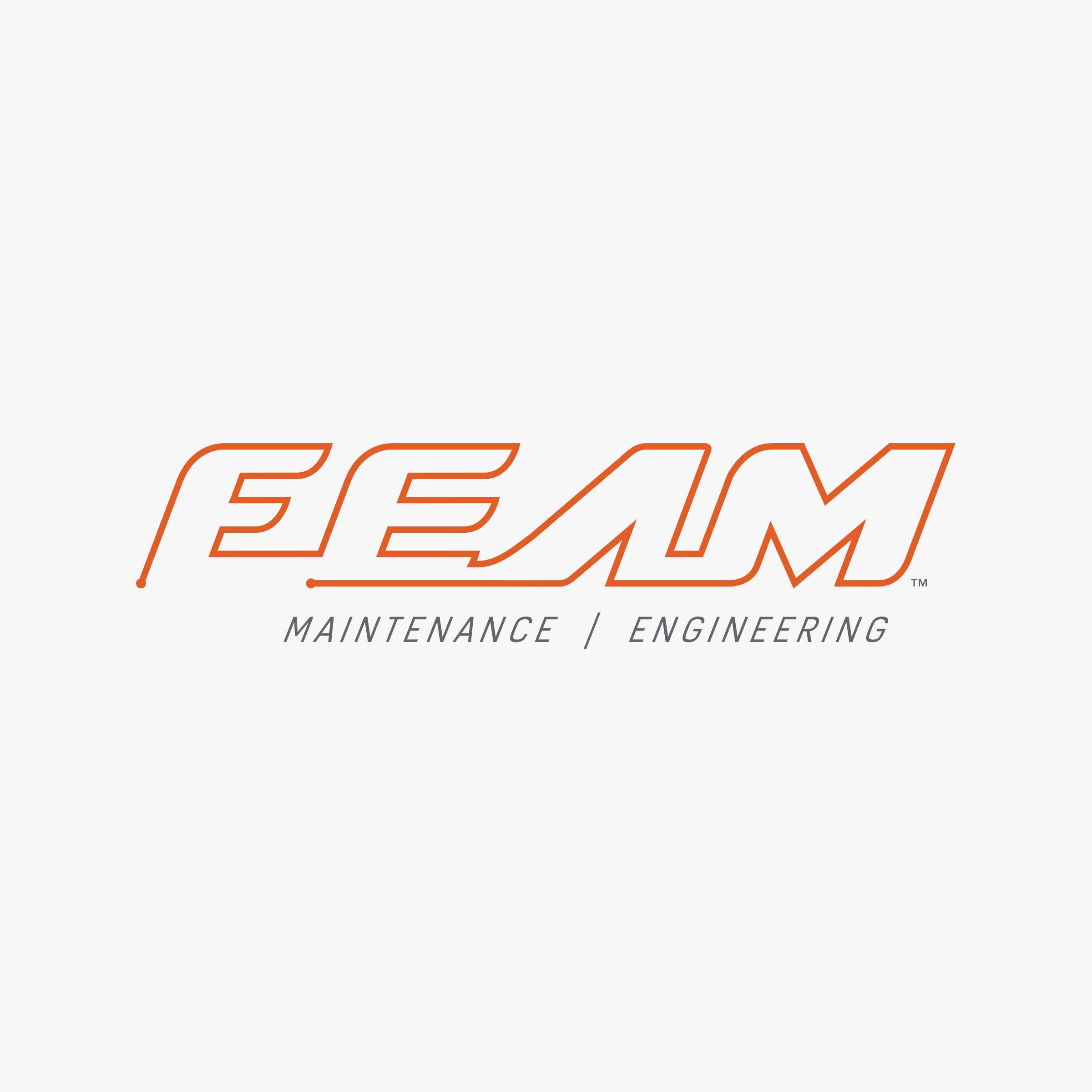 feam-2logo-design-by-create.jpg