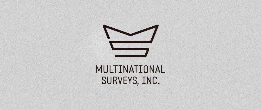 multinational-surveys-logo_900.jpg
